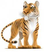 Tiger people fortune,characteristics,personality